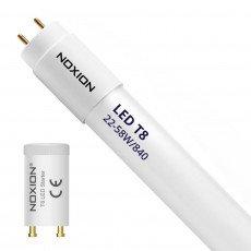 Noxion Avant LED T8 Tube EM 150cm 22W 840   Vervangt 58W