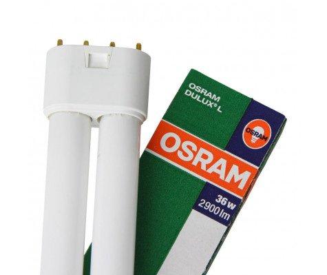 Osram Dulux L 36W 840 | 4-Pin