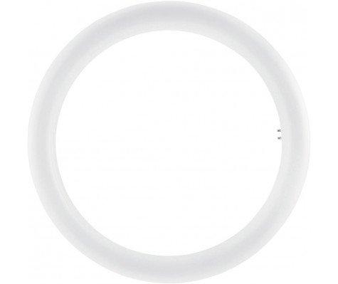 Osram SubstiTUBE T9 Circular EM MAINS G10Q 20W 865 | Vervangt 32W
