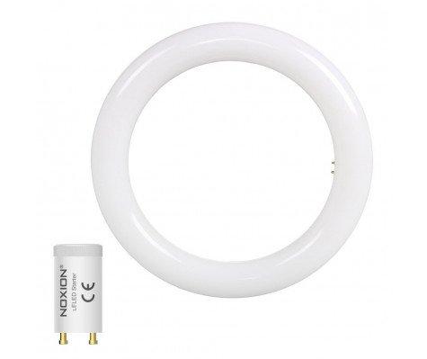Noxion Avant LED T9 Tube Circular EM/MAINS 12W 840 | Vervangt 22W